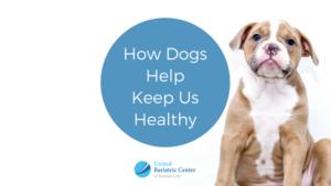 how dogs help keep us healthy